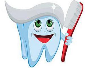 Правила и рекомендации, как правильно ухаживать за зубами